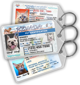 front-page-new-tags